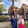 澳洲 阿得雷德  An & Pamela 海外婚紗拍攝